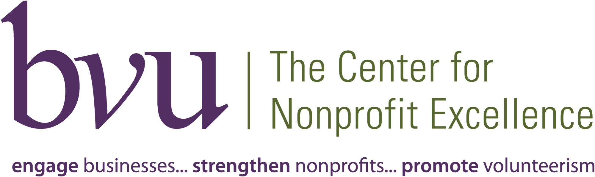 bvu nonprofit excellence pro bono week
