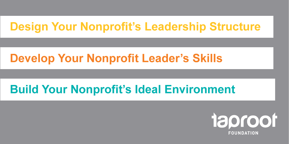 Design your nonprofit's leadership structure, Develop your Nonprofit Leader's skills, and Build Your Nonprofit's ideal environment